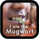 I ate the Mugwort!