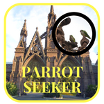 Parrot Seeker Badge